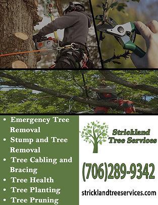 Strickland Tree Service.jpg