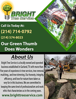 Bright Tree Service Correction 3.jpg