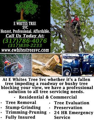 E. White's Tree SVC Corrections.jpg