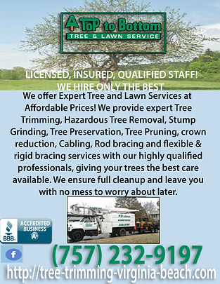 A Top to Bottom Tree & Lawn Service.jpg