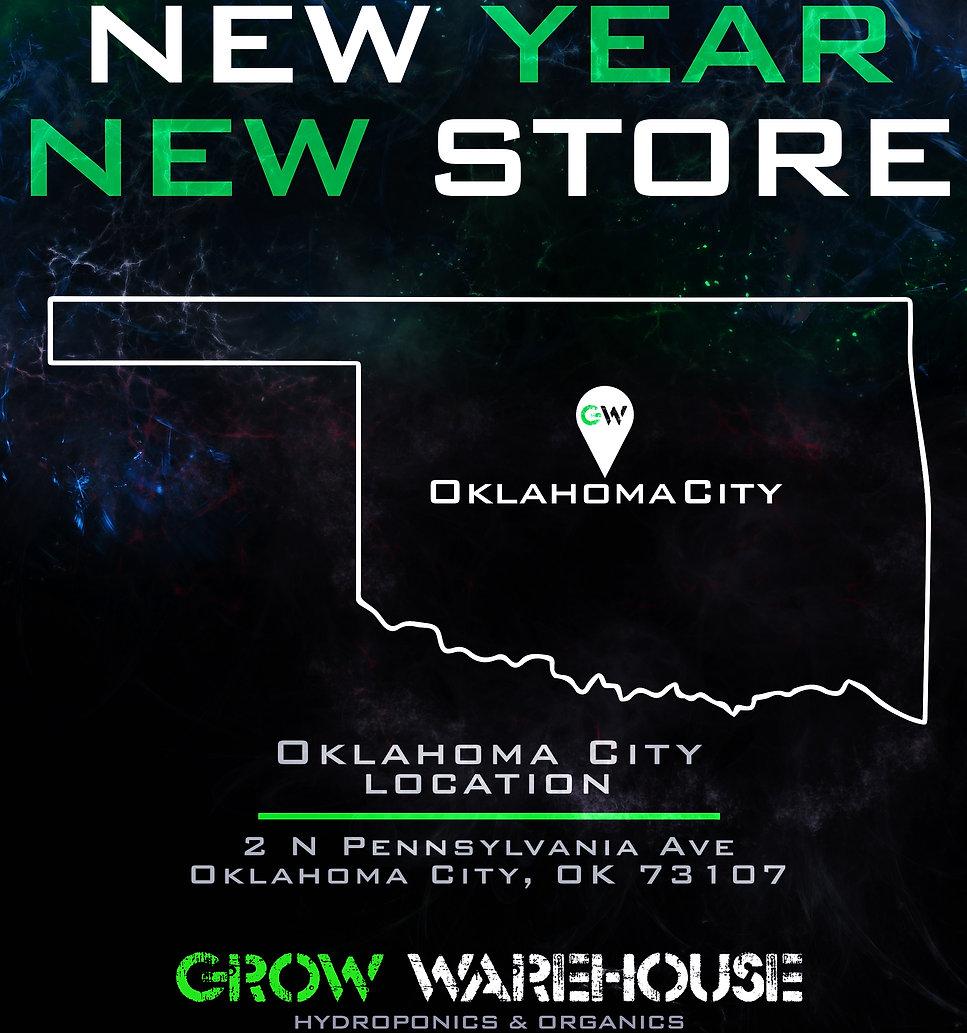 New Year New Store Promo Art.jpg