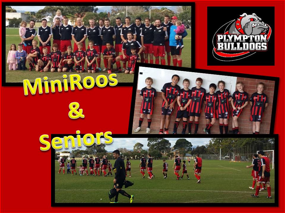MiniRoos & Seniors