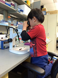 Scientist-in-training May 22-2015b.jpg
