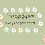 Hope your day goes purr-fect - Ashley Asitimbay.png