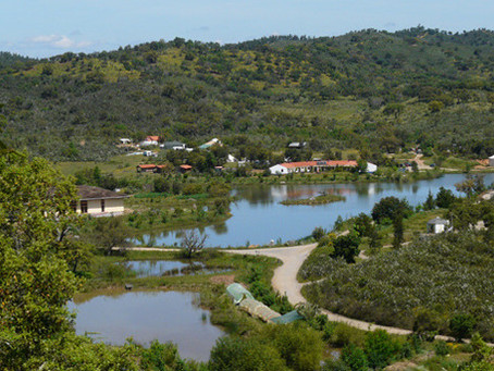 Communal Living with Animals and Nature in Portugal- The Flaming Vegan