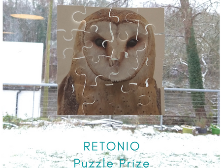 Recycled jigsaw puzzle prize