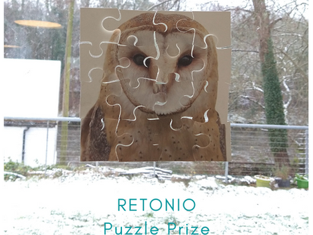 Recycled jigsaw puzzle prize closes 26th Feb