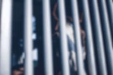 Cheval dans une cage