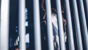 Is your job an elegant prison?