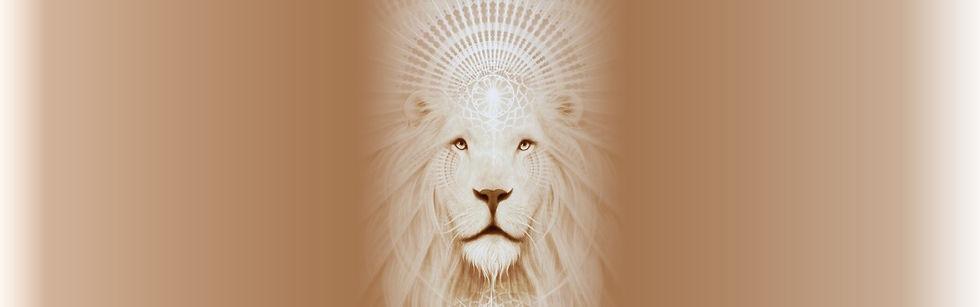Lion Banner 1.jpg