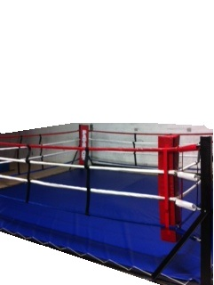 Floor Mount Boxing Ring
