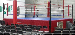 Deluxe Boxing Ring