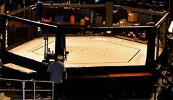 MMA Hex cage