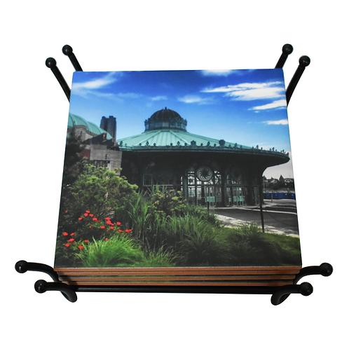 Asbury Carousel Coaster