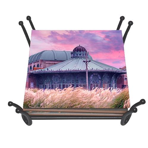 Asbury Carousel II Coaster