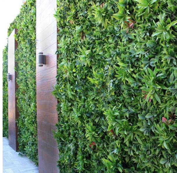 Green Container #ContaiinersCostaRica .p