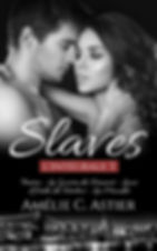 INTEGRALE (SLAVES 3).jpg