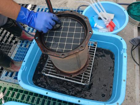 マフラー(DPF)洗浄