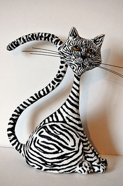 Gato cebra