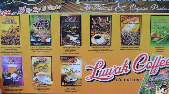 Cartel informativo Café Luwak
