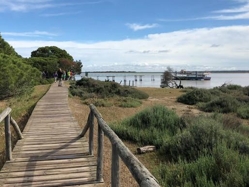 Espacio Natural de Doñana (UNESCO). Andalucía (España)