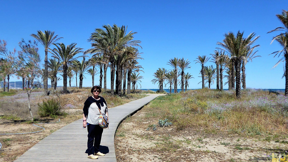 Grao, Castellón de la Plana