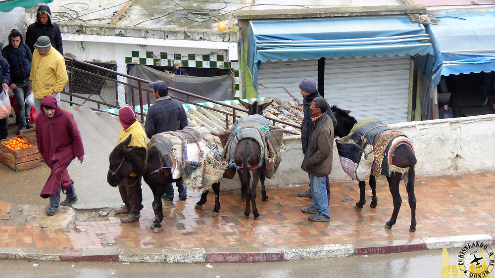 Mulay Idris, Marruecos