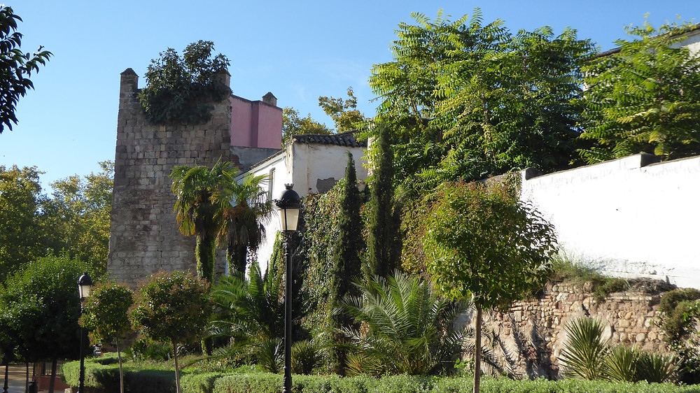 Andujar (Jaén - España)