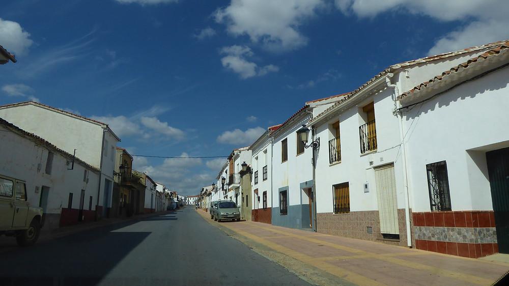 Alamillo (Ciudad Real - España)