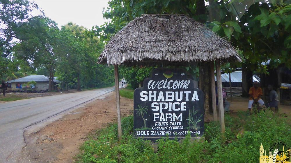 Plantación de especias (Zanzíbar)