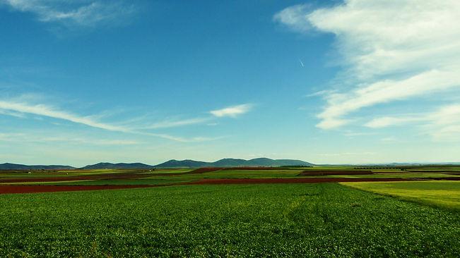 Viaje a la Mancha