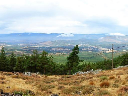 Ruta en coche por La Sierra del Rincón. Reserva de la Biosfera (Unesco). Comunidad de Madrid (España