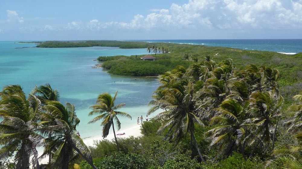 Isla Contoy (Yucatán-México)
