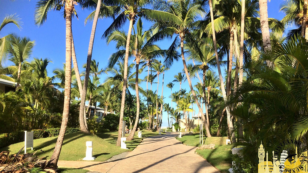 Punta Cana (Playa Bávaro). República Dominicana