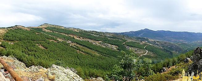Excursión en coche por la Sierra del Rincón