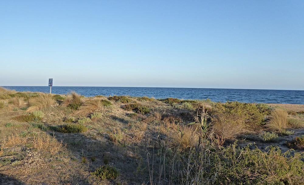 Playa Costa Dorada