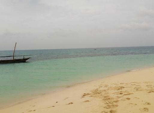 Excursión a isla Kwale (Safari Blue). Zanzíbar (Tanzania)