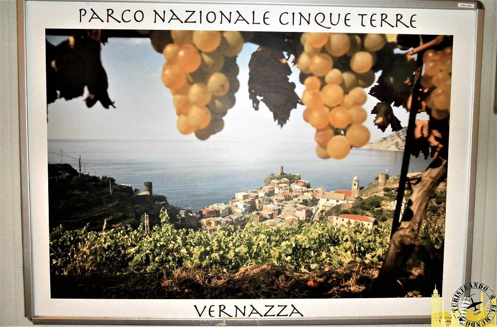 Cinque Terre (Italia). Vernazza