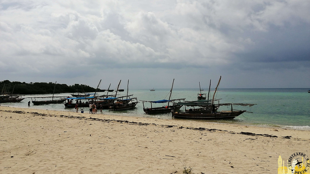 Playa Isla de Kwale