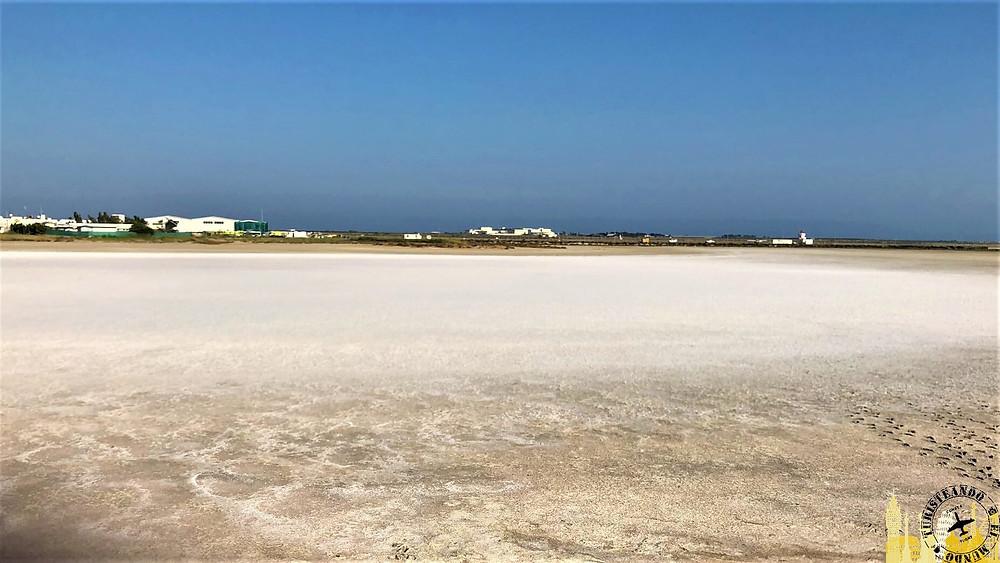 Lago salado de Larnaca (Chipre)
