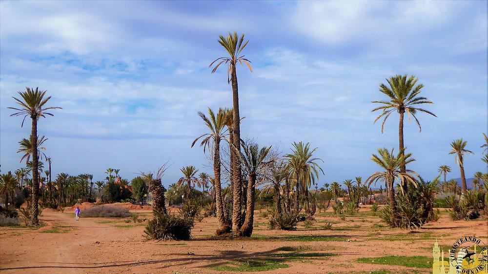 Palmeral, Marrakech (Marruecos)