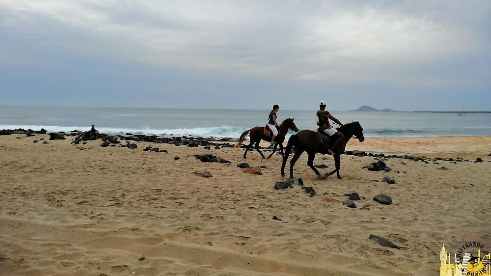 Isla de la Sal (Cabo Verde). Ponta Preta