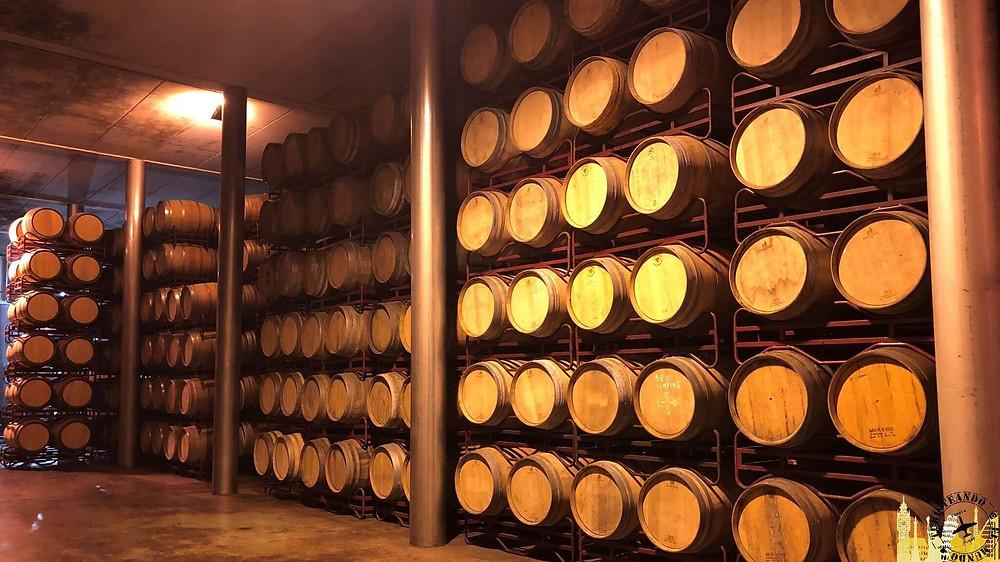Tomelloso (Castilla la Mancha). Bodegas Virgen de las Viñas