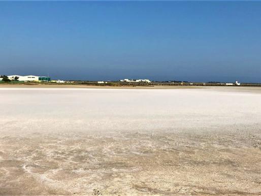 El Complejo del Lago Salado y Hala Sultan Tekke (Unesco) en Larnaca. Chipre