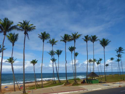 Salvador de Bahía (Brasil). Playas y alrededores.