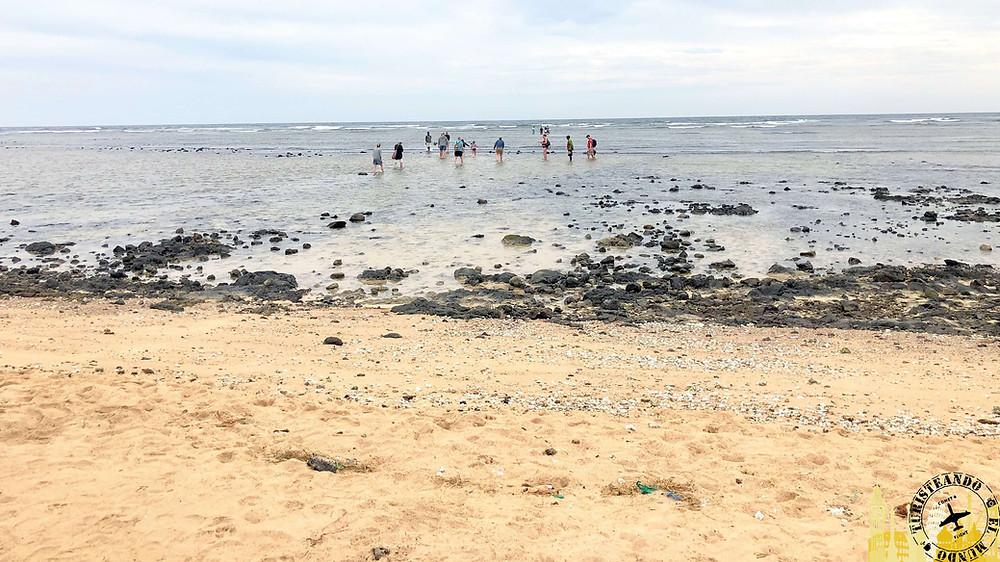 Isla de la Sal (Cabo Verde). Shark Bay