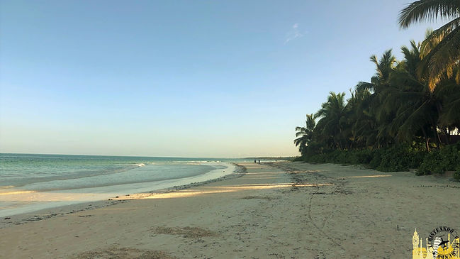 Viaje a Zanzibar