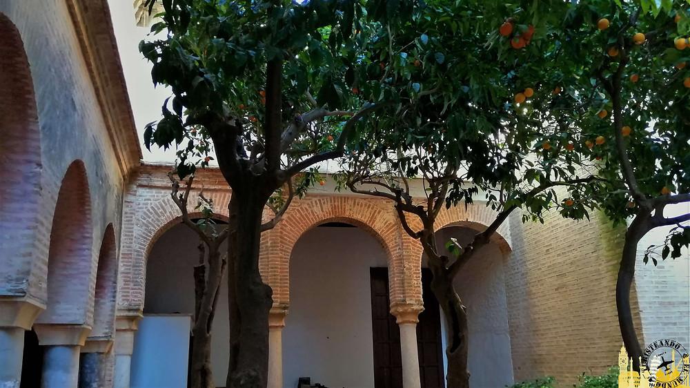 Iglesia de Santa María. Carmona (Sevilla). España