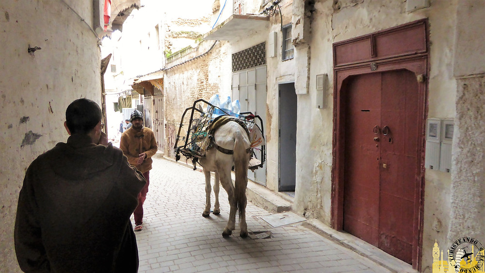 Medina, Fez (Marruecos)