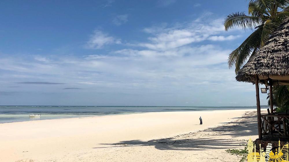 Playas de Zanzíbar, Tanzania